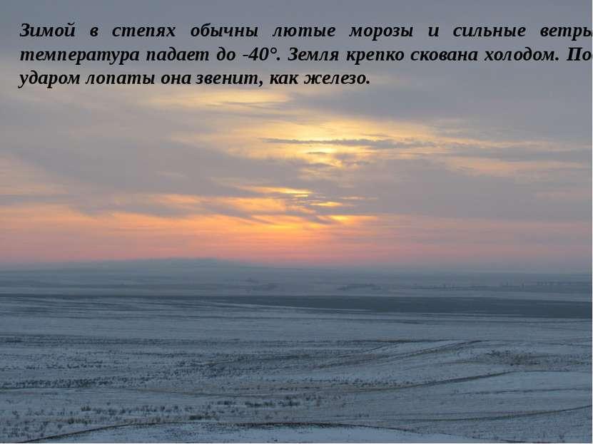 Зимой в степях обычны лютые морозы и сильные ветры, температура падает до -40...