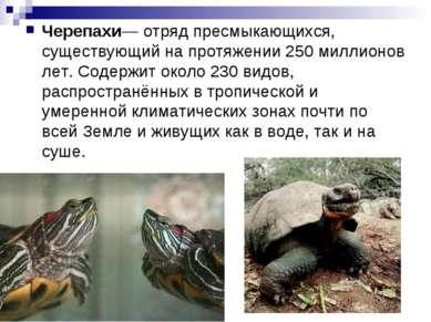 Черепахи— отряд пресмыкающихся, существующий на протяжении 250 миллионов лет....