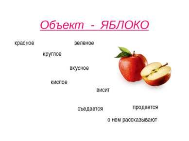 Объект - ЯБЛОКО красное круглое вкусное висит съедается продается зеленое кис...