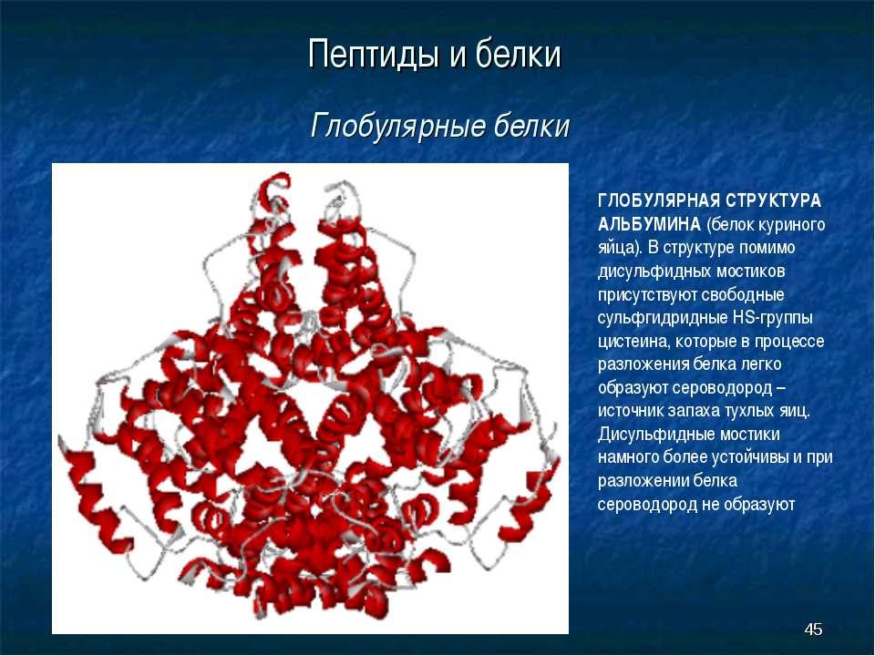 * Пептиды и белки Глобулярные белки ГЛОБУЛЯРНАЯ СТРУКТУРА АЛЬБУМИНА (белок ку...