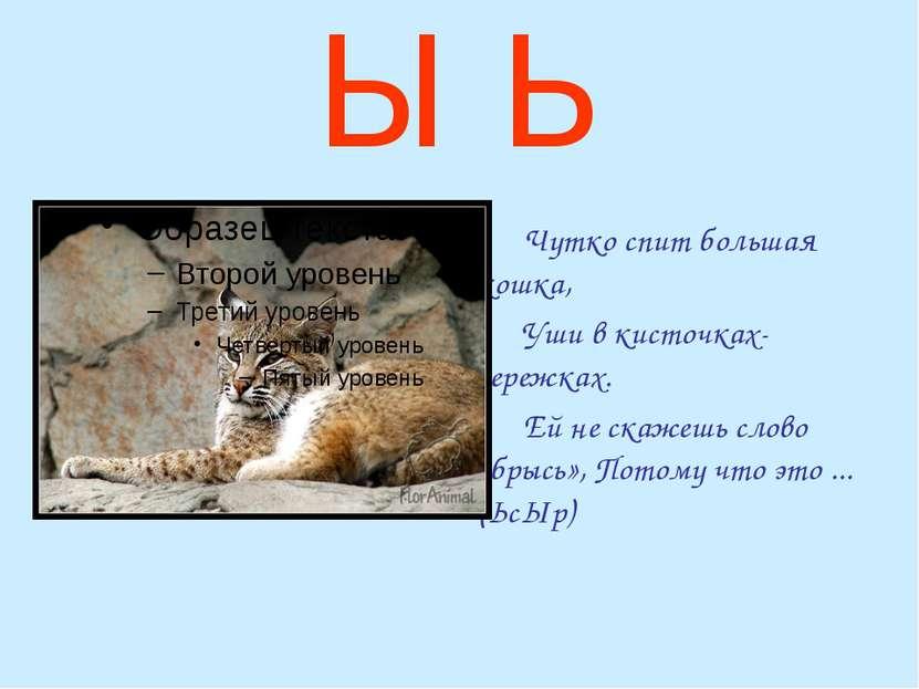 Ы Ь Чутко спит большая кошка, Уши в кисточках-сережках. Ей не скажешь слово «...