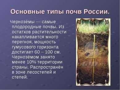 Основные типы почв России. Чернозёмы — самые плодородные почвы. Из остатков р...