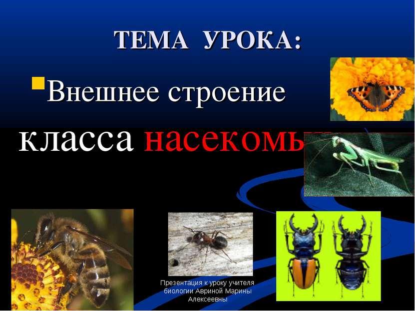 Презентация к уроку учителя биологии Авриной Марины Алексеевны ТЕМА УРОКА: Вн...