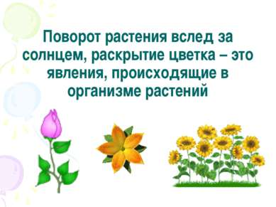 Поворот растения вслед за солнцем, раскрытие цветка – это явления, происходящ...