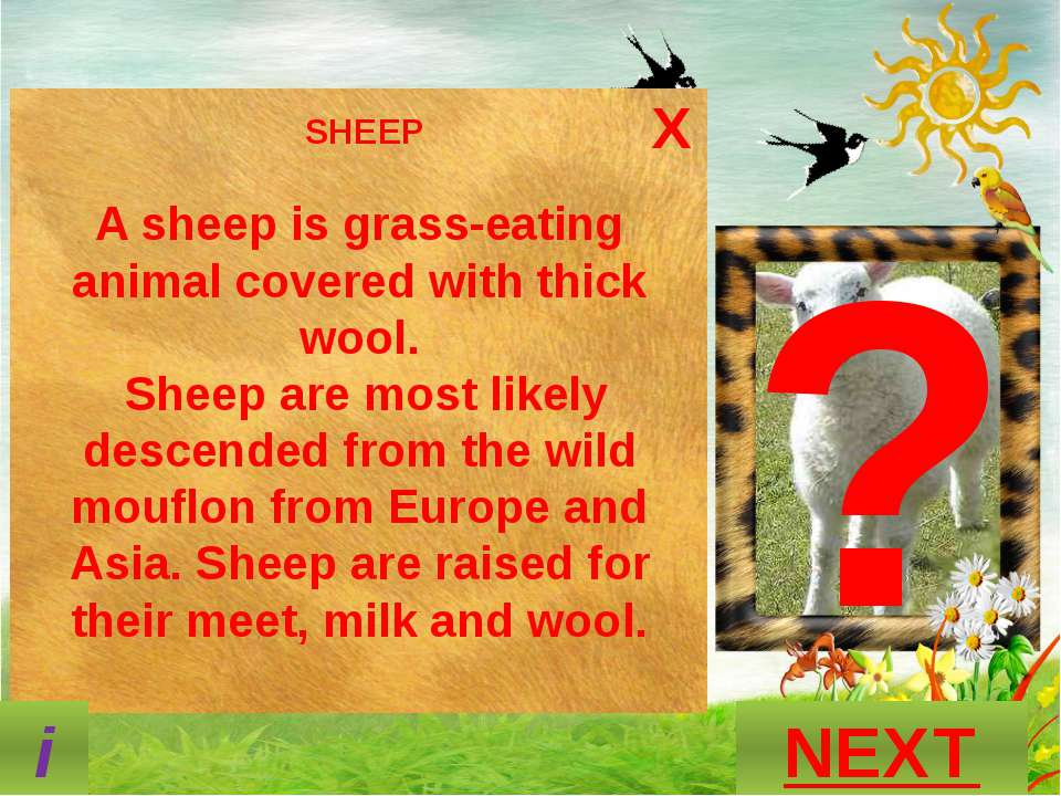 ? What is this animal called? GUESS? P A N D A NEXT S N A K E O T T E R M O U...