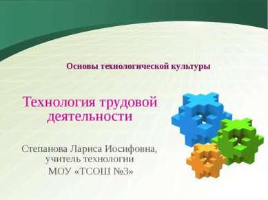 Основы технологической культуры Технология трудовой деятельности Степанова Ла...