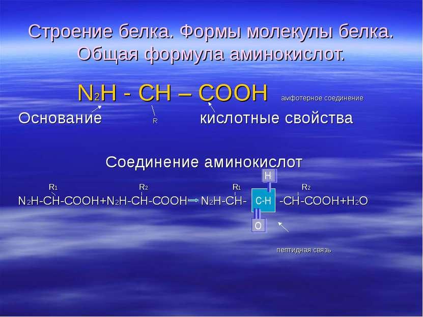 Строение белка. Формы молекулы белка. Общая формула аминокислот. N2H - CH – C...