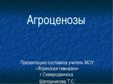 Агроценозы Презентацию составила учитель МОУ «Ягринская гимназия» г.Северодви...