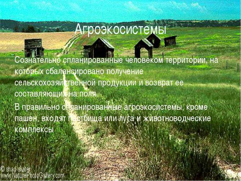 Агроэкосистемы Сознательно спланированные человеком территории, на которых сб...