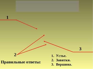 1 2 3 Правильные ответы: Устье. Завитки. Вершина.