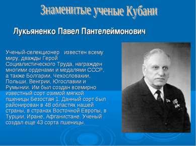 Ученый-селекционер известен всему миру, дважды Герой Социалистического Труда,...