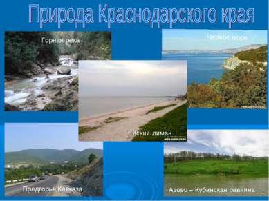 Предгорья Кавказа