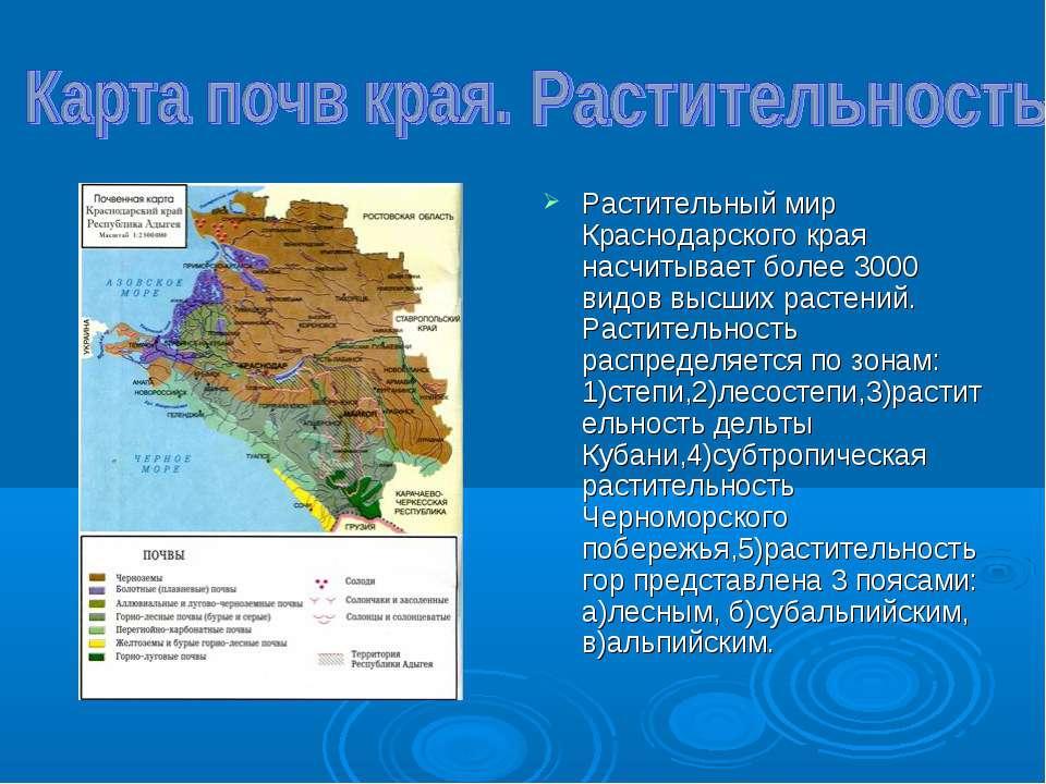Растительный мир Краснодарского края насчитывает более 3000 видов высших раст...