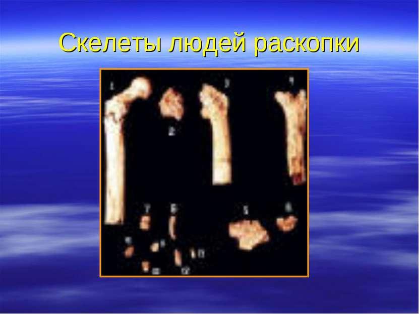 Скелеты людей раскопки