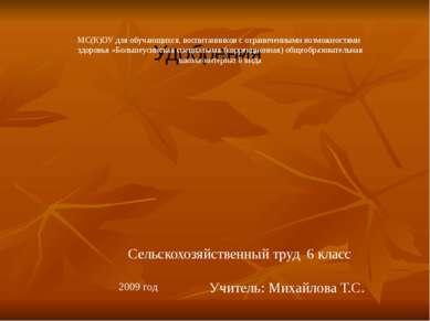 Удобрения Сельскохозяйственный труд 6 класс Учитель: Михайлова Т.С. 2009 год ...