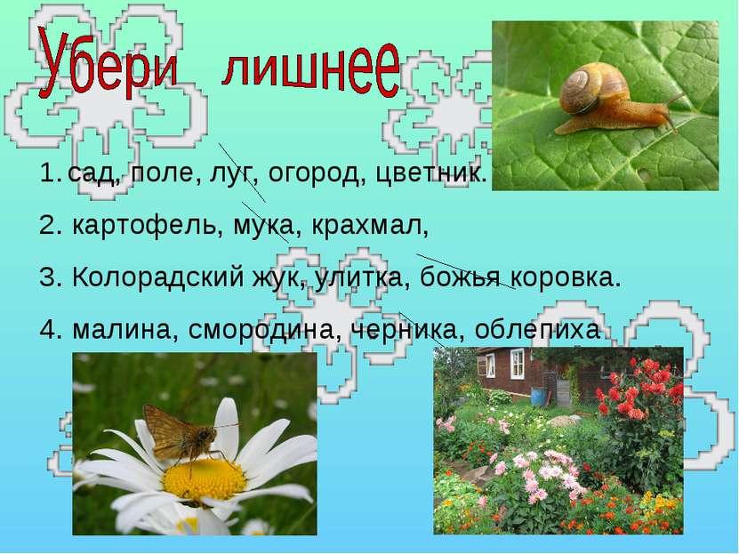 сад, поле, луг, огород, цветник. 2. картофель, мука, крахмал, 3. Колорадский ...
