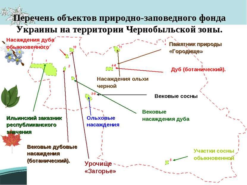 Перечень объектов природно-заповедного фонда Украины на территории Чернобыльс...