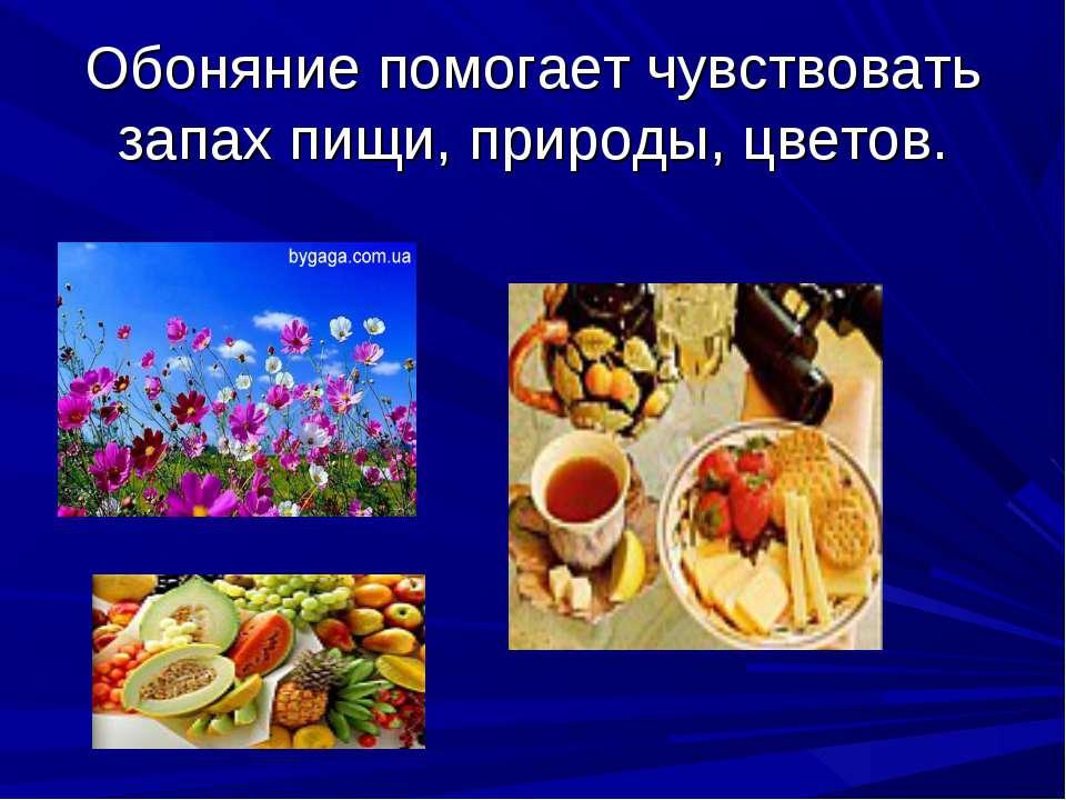 Обоняние помогает чувствовать запах пищи, природы, цветов.