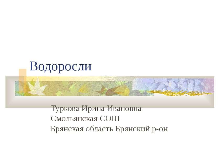 Водоросли Туркова Ирина Ивановна Смольянская СОШ Брянская область Брянский р-он