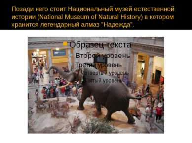 Позади него стоит Национальный музей естественной истории (National Museum of...