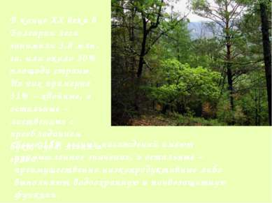 В конце XX века в Болгарии леса занимали 3,8 млн. га, или около 30% площади с...