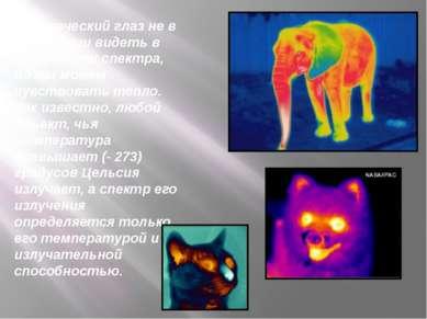 Человеческий глаз не в состоянии видеть в этой части спектра, но мы можем чув...