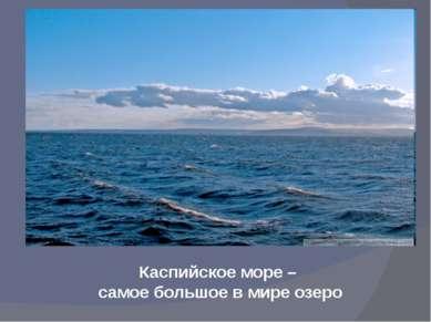Свыше 1000 рек, речек, ручейков несут свои воды в великую Волгу. Волга