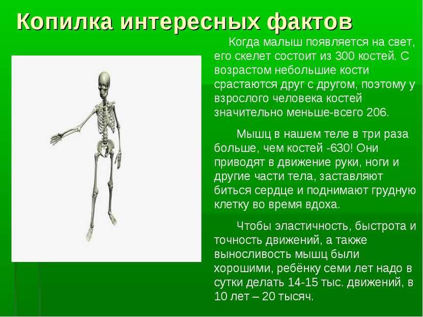 Копилка интересных фактов Когда малыш появляется на свет, его скелет состоит ...