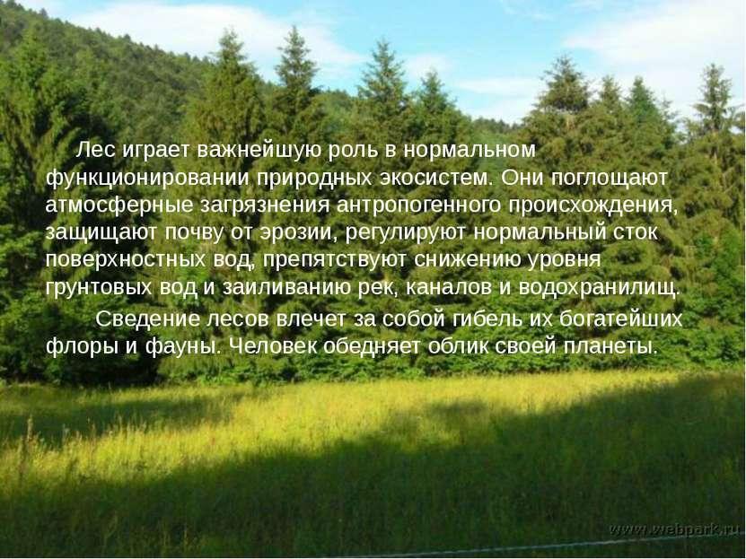 Лес играет важнейшую роль в нормальном функционировании природных экосистем. ...