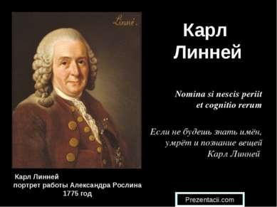 Карл Линней Карл Линней портрет работы Александра Рослина 1775 год Nomina si ...