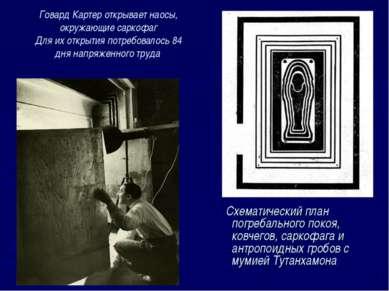 Схематический план погребального покоя, ковчегов, саркофага и антропоидных гр...