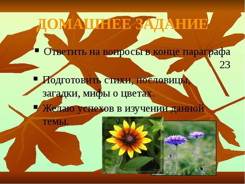 ДОМАШНЕЕ ЗАДАНИЕ Ответить на вопросы в конце параграфа 23 Подготовить стихи, ...