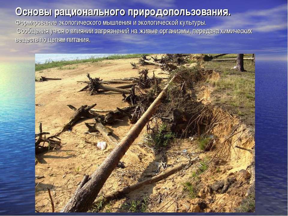 Основы рационального природопользования. Формирование экологического мышления...