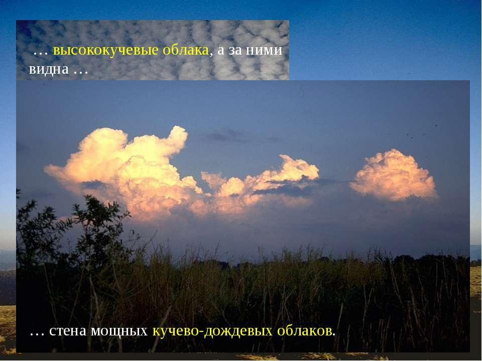 О приближении холодного фронта предупреждают … … перисто-кучевые облака, расп...