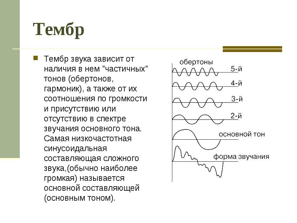 """Тембр Тембр звука зависит от наличия в нем """"частичных"""" тонов (обертонов, гарм..."""