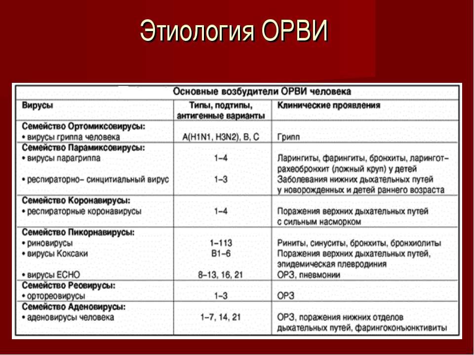 Этиология ОРВИ