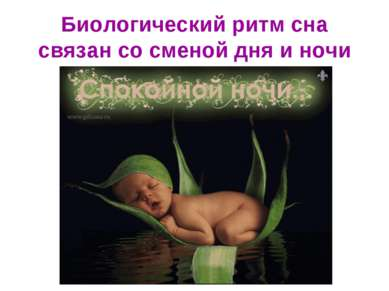 Биологический ритм сна связан со сменой дня и ночи