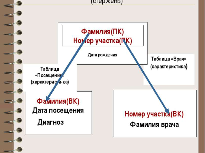 «Таблица – связь» Таблица «Пациент» (стержень) Таблица «Врач» (характеристика...