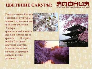 ЦВЕТЕНИЕ САКУРЫ: Сакура-символ Японии и японской культуры. С давних пор почит...