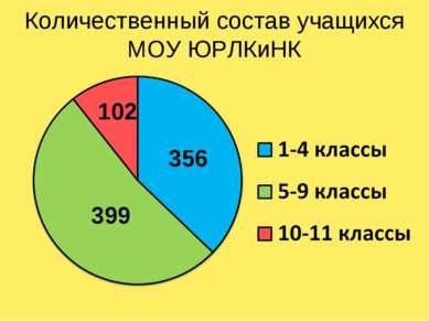 Количественный состав учащихся МОУ ЮРЛКиНК 356 102 399
