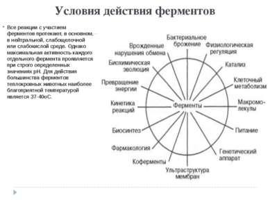 Условия действия ферментов Все реакции с участием ферментов протекают, в осно...