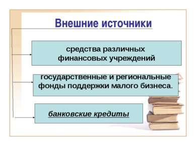 Внешние источники банковские кредиты государственные и региональные фонды под...