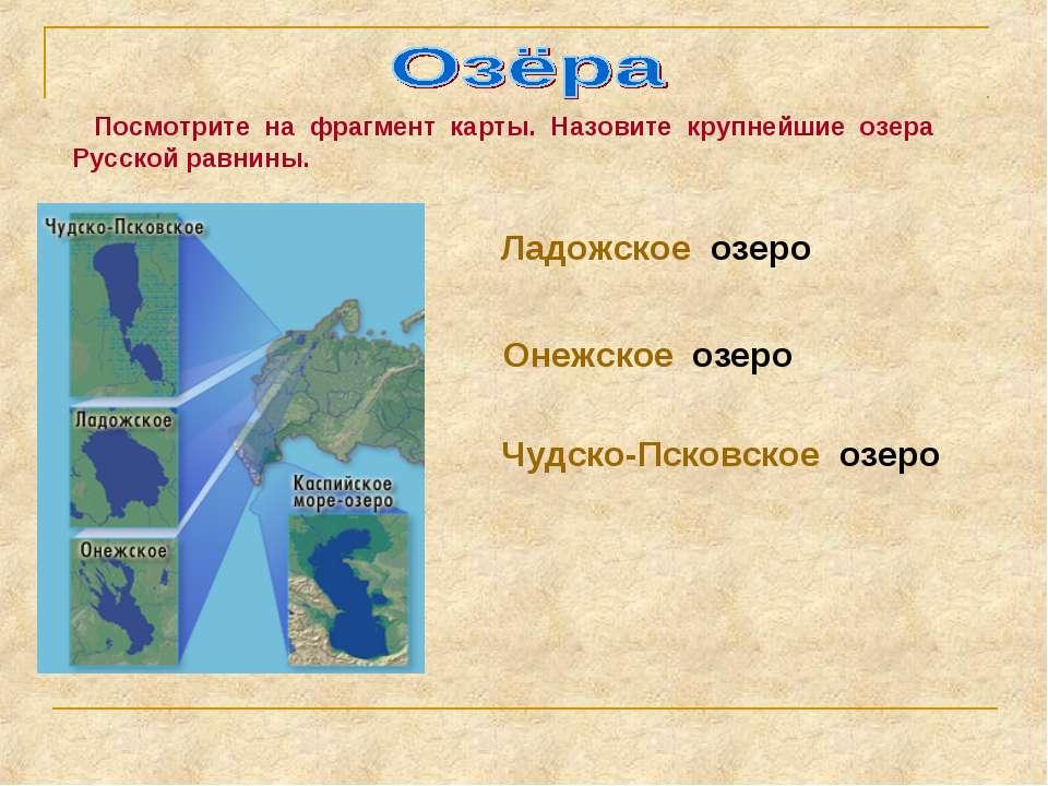 Посмотрите на фрагмент карты. Назовите крупнейшие озера Русской равнины. Ладо...
