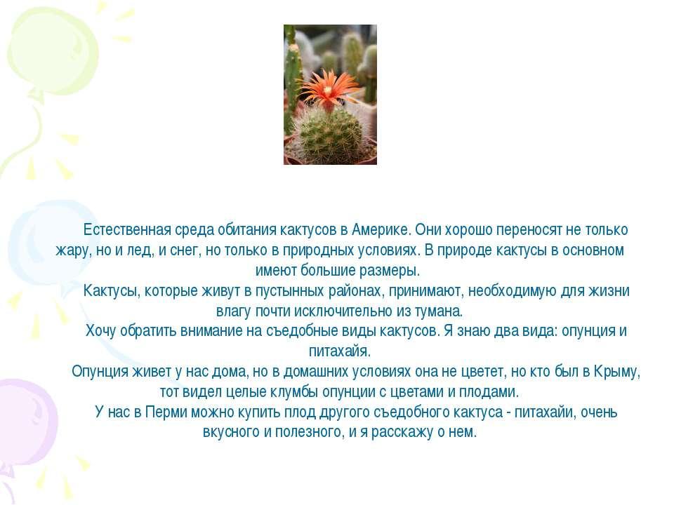 Естественная среда обитания кактусов в Америке. Они хорошо переносят не тольк...