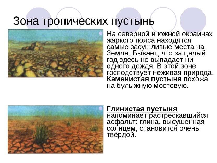 Зона тропических пустынь На северной и южной окраинах жаркого пояса находятся...