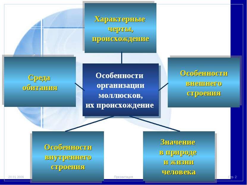 Особенности организации моллюсков, их происхождение Характерные черты, происх...