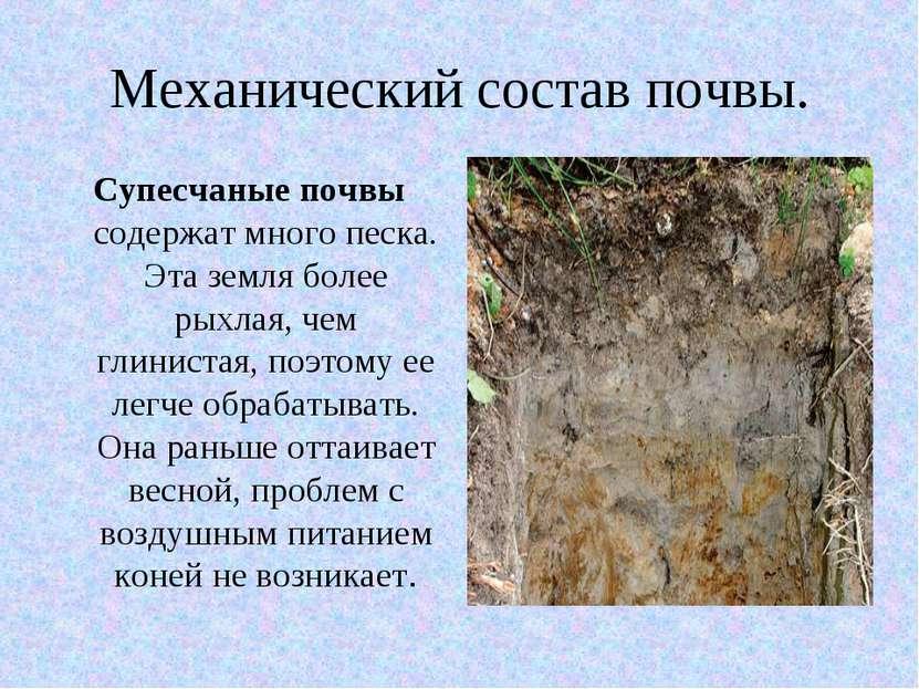 Механический состав почвы. Супесчаные почвы содержат много песка. Эта земля б...