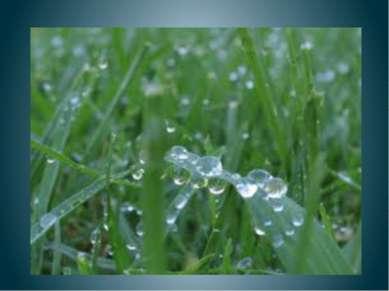 Утро в ранние часы Всюду в ранние часы Сшило утро дачное Всем травинкам из ро...