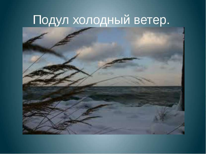 Подул холодный ветер.