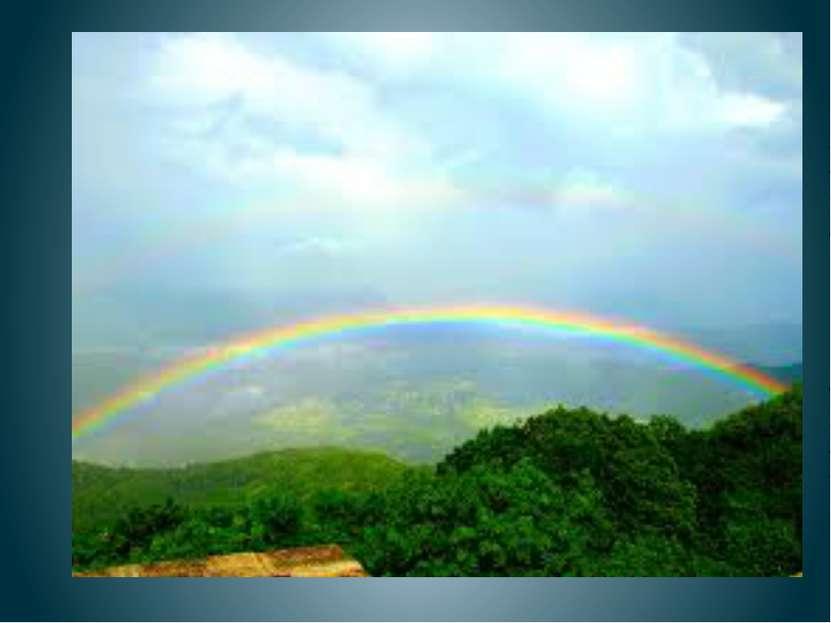 Разноцветное коромысло над озером повисло